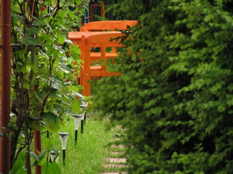 Csúcsforgalom van a kertben!